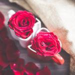 幸せな気持ちを呼び起こす色 ~色彩サプリ 薔薇色~